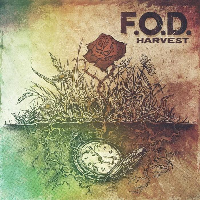 FOD- Harvest